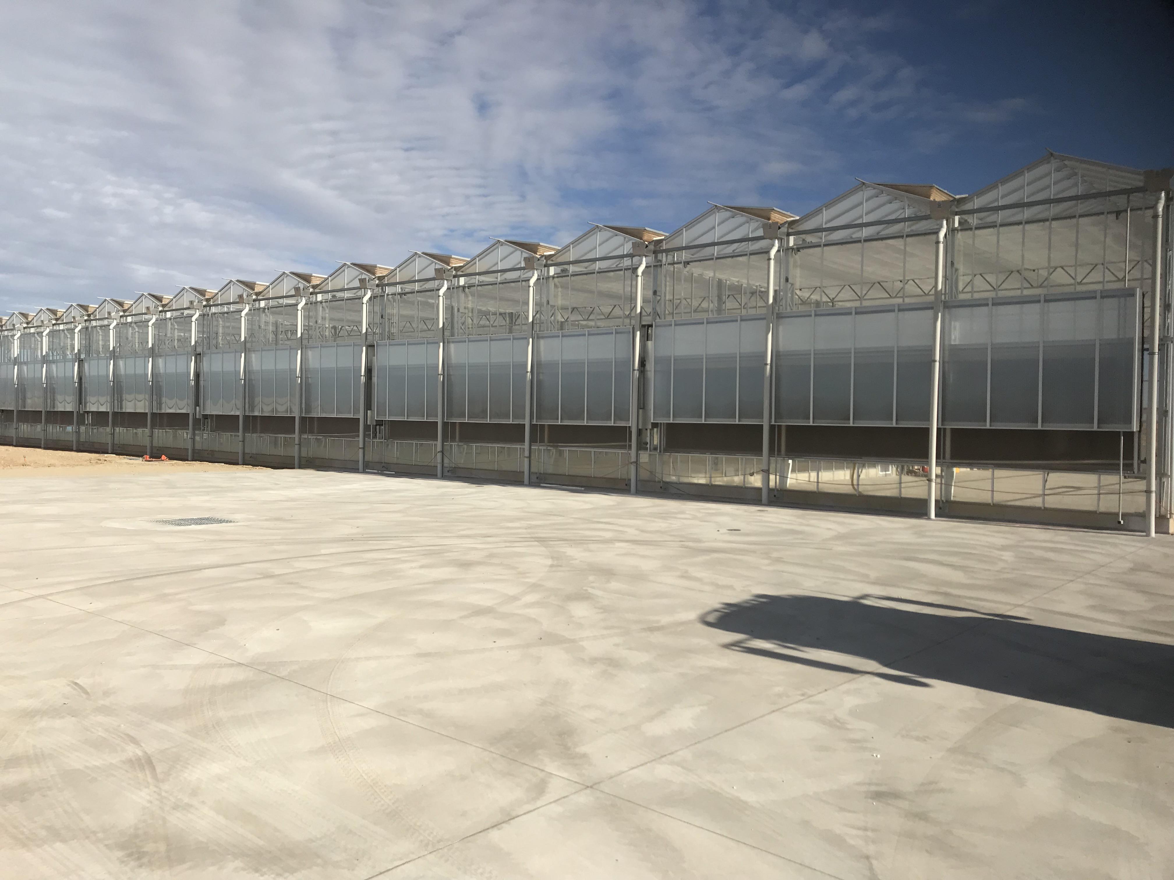 Australian Grain Technologies